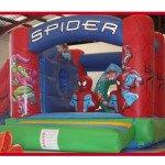 Spiderman 5x6m 180€